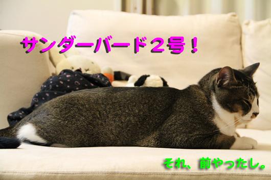 IMG_0045_R2号