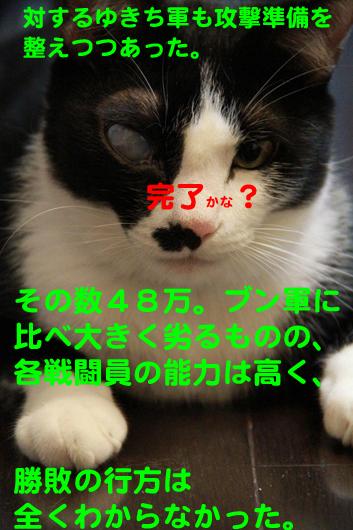IMG_0116_Rゆきち完了
