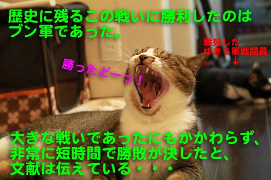 IMG_0142_Rブン軍勝利