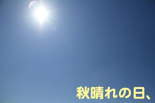 IMG_1255_R秋晴れ