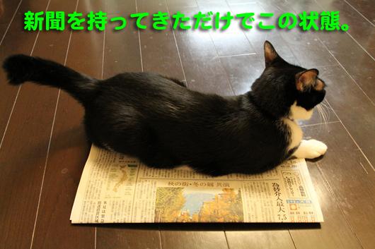 IMG_0041_R新聞持ってきた
