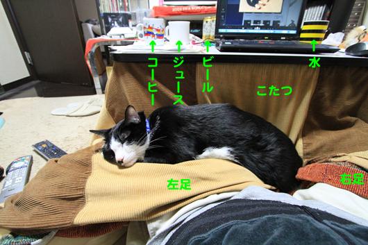 IMG_0023_R重いわっ!