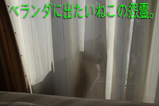 IMG_0072_R怨霊