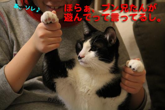 IMG_0500_Rあ、ソレ♪