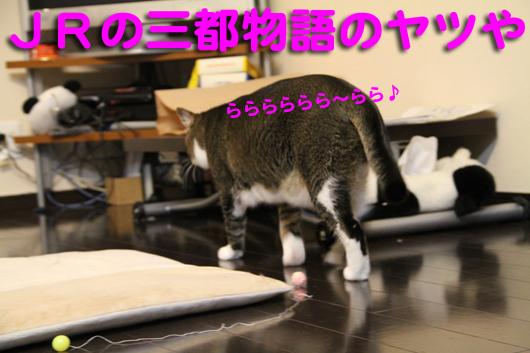 IMG_0297_R三都物語