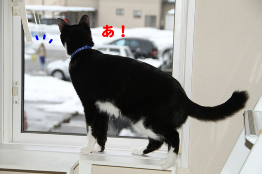 IMG_2454_Rあ!