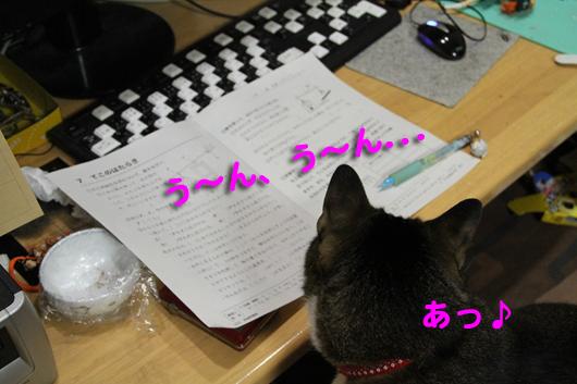 IMG_0054_Rう~ん、あっ♪
