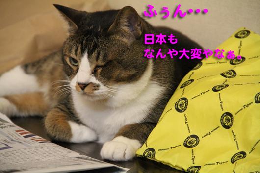 IMG_0161_R日本も大変