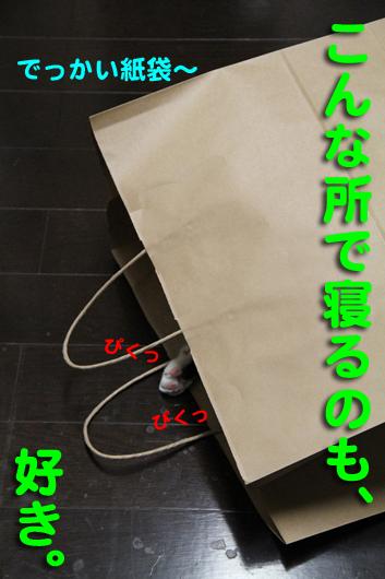 IMG_0009_Rでかい紙袋