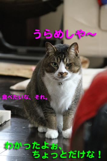 IMG_0186_Rうらめしや~