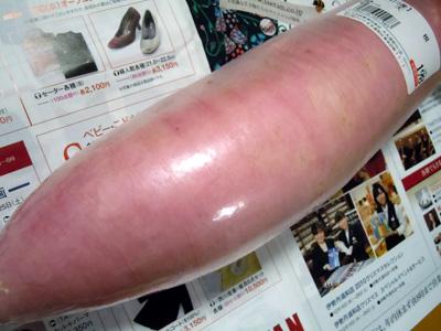 ピンク色の大根