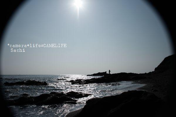のぞき見シリーズ~海に向かってノビ~~