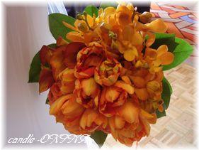2011_0129_121345AA-1.jpg