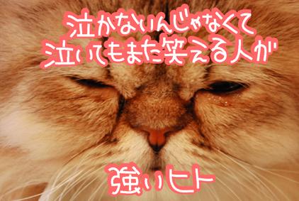 23 - コピー - コピー