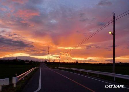夕陽に続く道