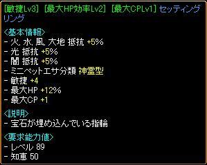 20091222_03.jpg