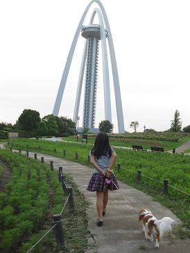 タワーの公園とドッグラン 016