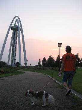 タワーの公園とドッグラン 004