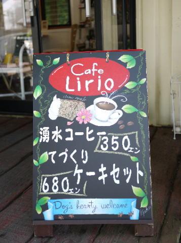 lirio7.jpg