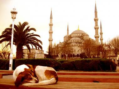 Sultanahmet+Camii_turkey.jpg