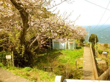 kamishima_mie.jpg