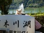 阿木川ダム マリア