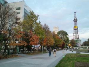 紅葉の大通り公園