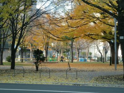 晩秋の大通り公園