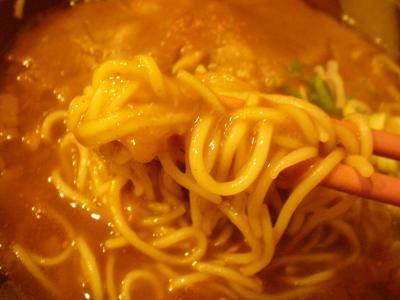 カレー南そば 麺アップ@錦水さん