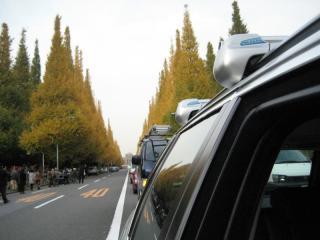 20091126_icyo-matsuri.jpg