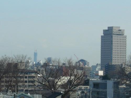 東京スカイツリー雑司ヶ谷2