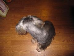 2009.11.15 (25)
