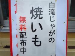 2011 019