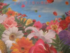 お花の楽園チラシ