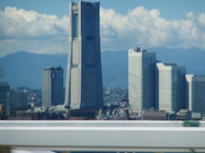 20101011-10.jpg