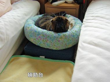 069丸ベッド