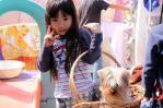 a_100324b.jpg