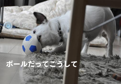 ボールだって