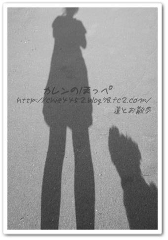 ママと蓮の影