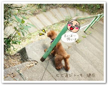 こわいっすね 階段