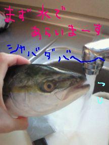 鯖水を飲む