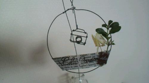 micro camera wreath-3
