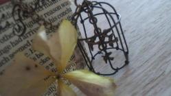 mini bird cage-2