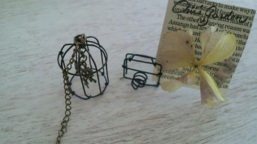 mini bird cage-1