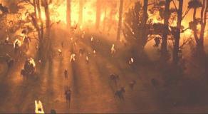 火の中の森の失踪する鹿の群れ