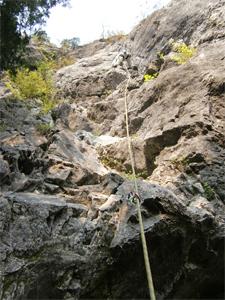 椿岩111010