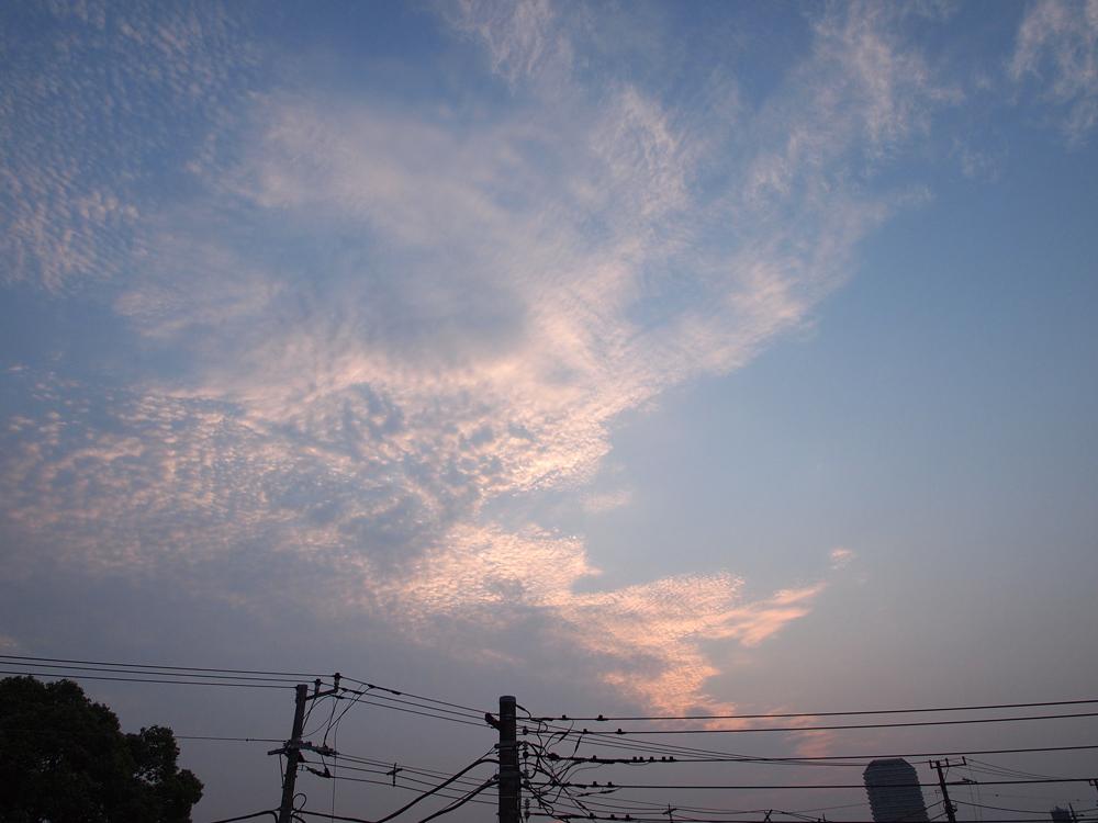 201108132.jpg
