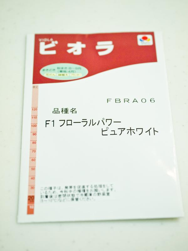201108241.jpg