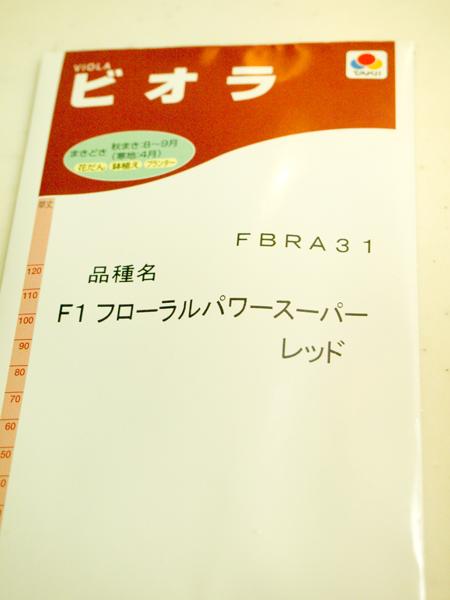 201108273.jpg