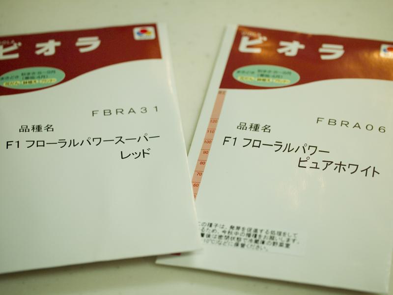 201108316.jpg